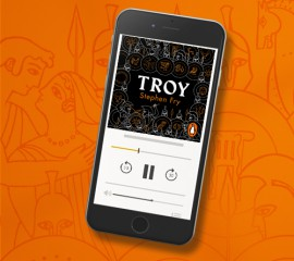 fry_500x445px_banner_Troy3